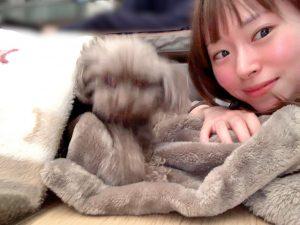 病床で頑張る愛犬ロザリー