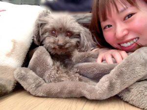 病床で笑顔を魅せる愛犬ロザリー