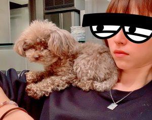 筆者の肩に乗る愛犬ロザリー